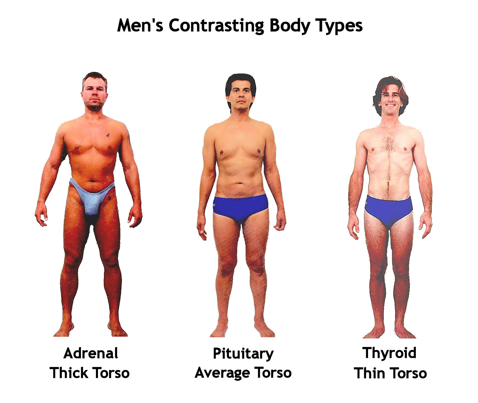 mens contrasting body shapes