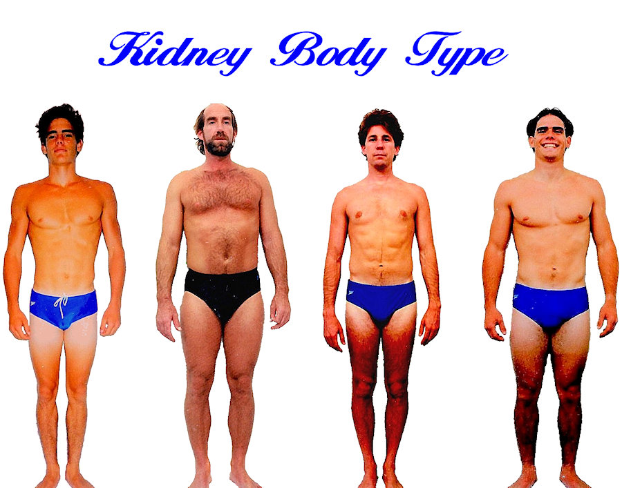 Mens Kidney body shape