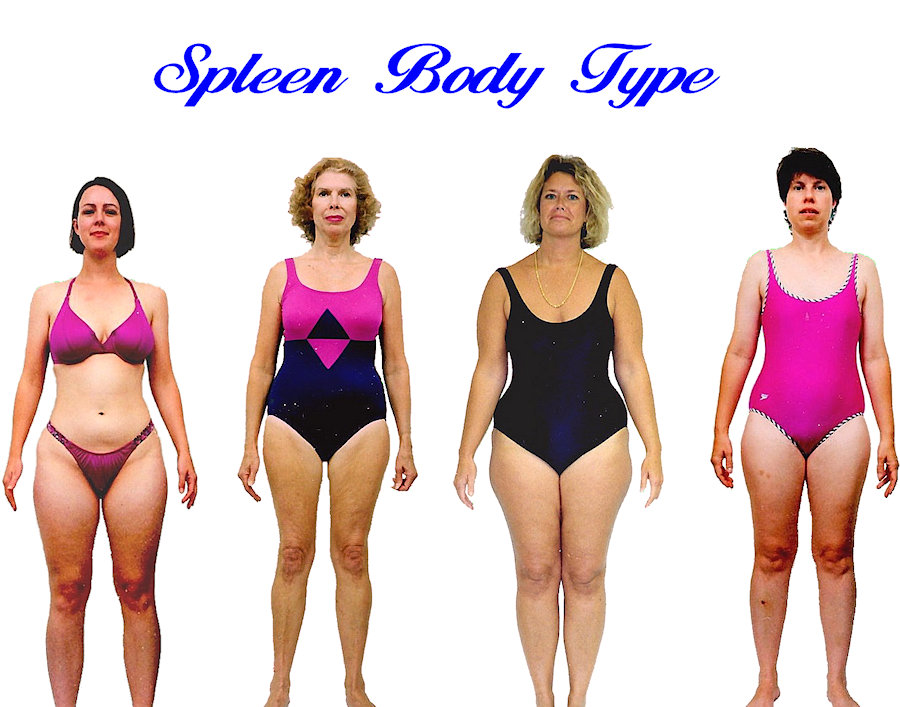 Womens Spleen body shape