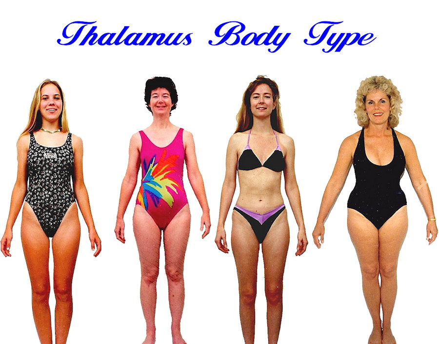 Womens Thalamus body shape